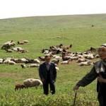 جشنواره ملی عشایر در دشت مغان برگزار شد