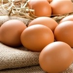 رتبه دوم تولید تخممرغ را، آذربایجانشرقی در اختیار دارد