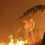 """جزئیات آتشی که به جان """"آبیدر"""" افتاد+عکس"""