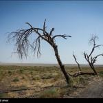قرمز پر رنگ بحران آب در آذربایجان شرقی