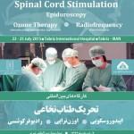پیشرفت های جدید در درمان دیسک کمر و تنگی کانال نخاعی/ کارگاه بین المللی تحریک طناب نخاعی در بیمارستان بین المللی تبریز برگزار میشود
