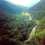 جنگل های ارسباران ثبت جهانی می شود