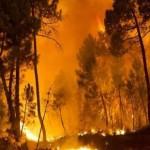۱۰۰ هکتار از مراتع شهرستان آذرشهر در آتش سوخت