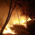 باغ داران آذربایجان شرقی برای مقابله با آتش سوزی آموزش می بینند
