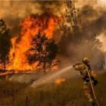 امکانات آذربایجان شرقی برای مهار آتشسوزی احتمالی در جنگل ها کافی نیست