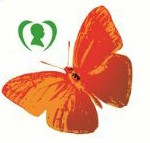 اولین جشنواره پروانهها در اردبیل برگزار میشود