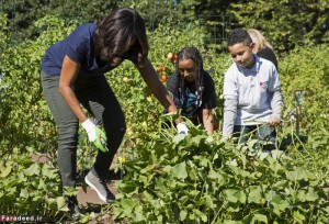 U.S. first lady Michelle Obama picks vegetables with elementary school students during the annual fall harvest of the White House Kitchen Garden