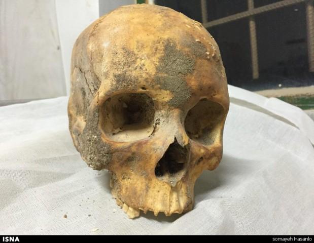 استخوانهای استخراجشده در جنوبغرب ایران
