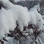 چشم غره زمستان به بهار در آذربایجان/ بارش ۲۵ سانتیمتر برف و کاهش ۱۲ درجهای دما