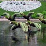 کمبود سرانه سبز در باغ شهر ایران؛ چه باید کرد؟