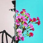 رونمایی از کمپین «قلیانها را گلدان کنیم» در تبریز
