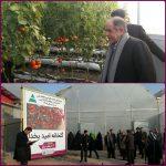 یک واحد گلخانهای با حضور اکبر ترکان در منطقه آزاد ارس افتتاح شد