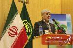 فعالیت کشاورزی در مزارع سبزی و صیفی تبریز تداوم خواهد داشت
