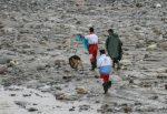 پیدا شدن جسد یکی دیگر از قربانیان سیل آذربایجان