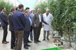 تاکید نماینده مجلس بر رفع موانع فعالیت اقتصادی در منطقه آزاد ارس