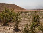 اردبیل با کمبود منابع آبی مواجه است